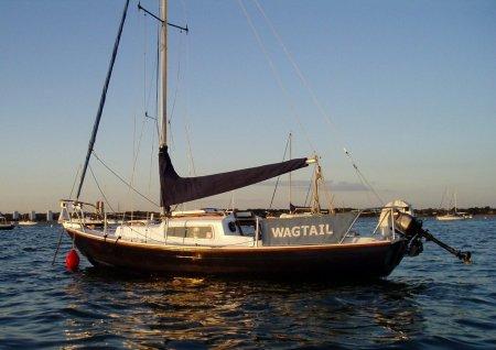 wagtail-sunset-900x636