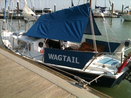 Wagtail02_NReid_20140301